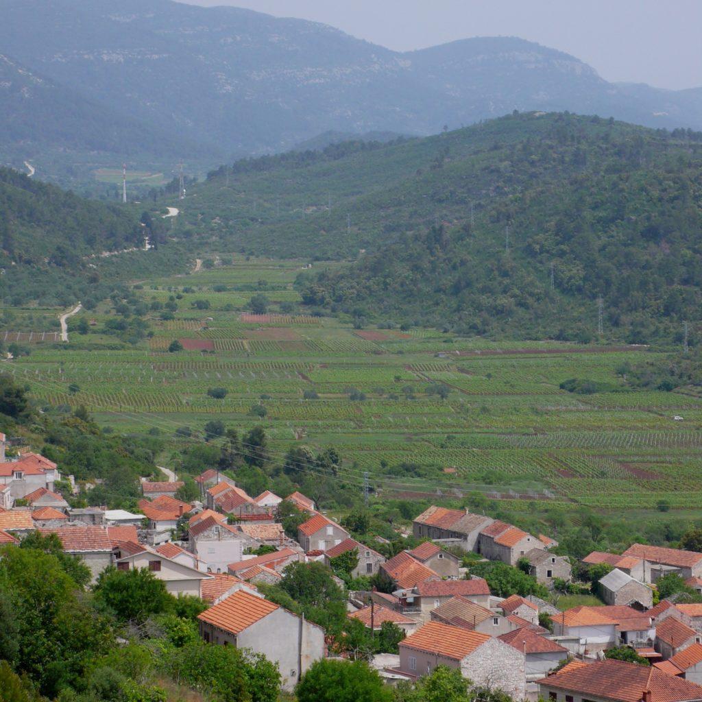 Visiting wineries on Korčula