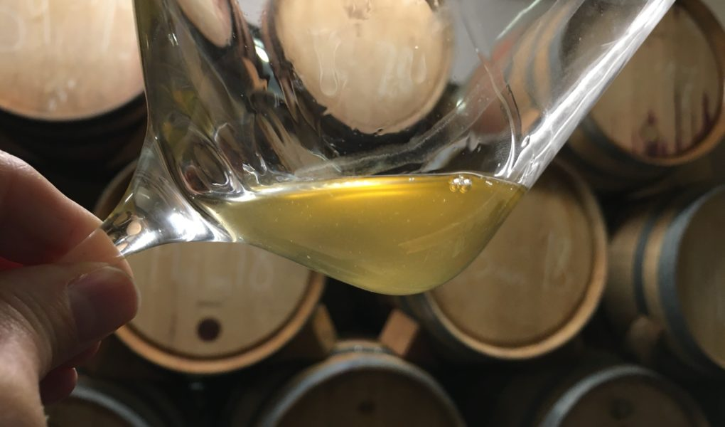 Grabovac Kujundžuša 2020 barrel sample