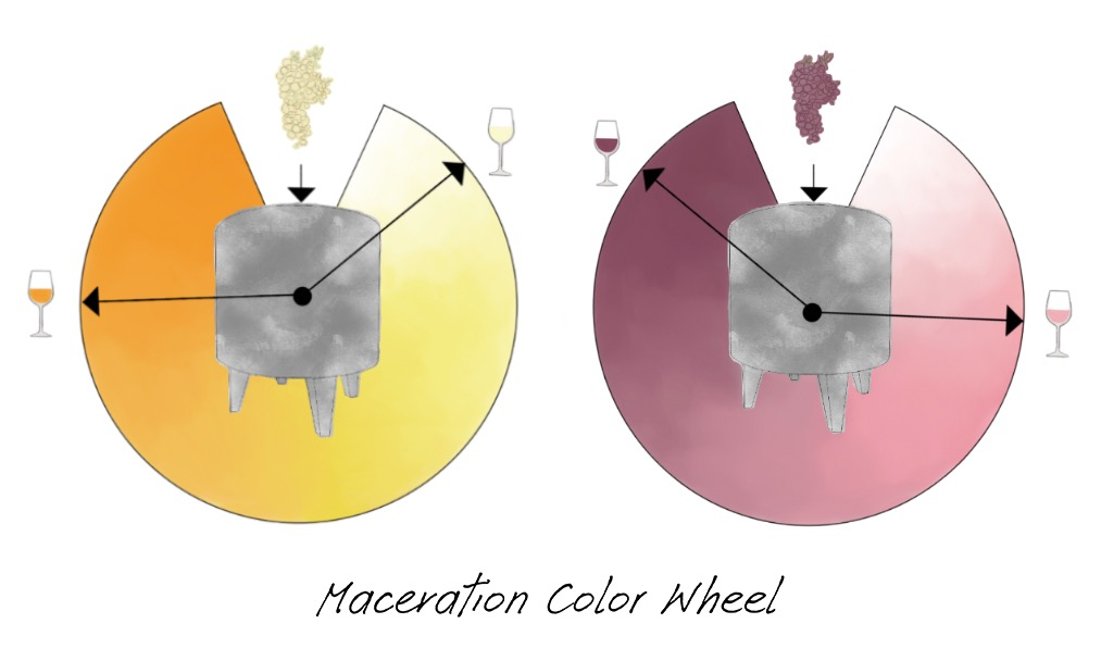 Color wheels show concept of maceration