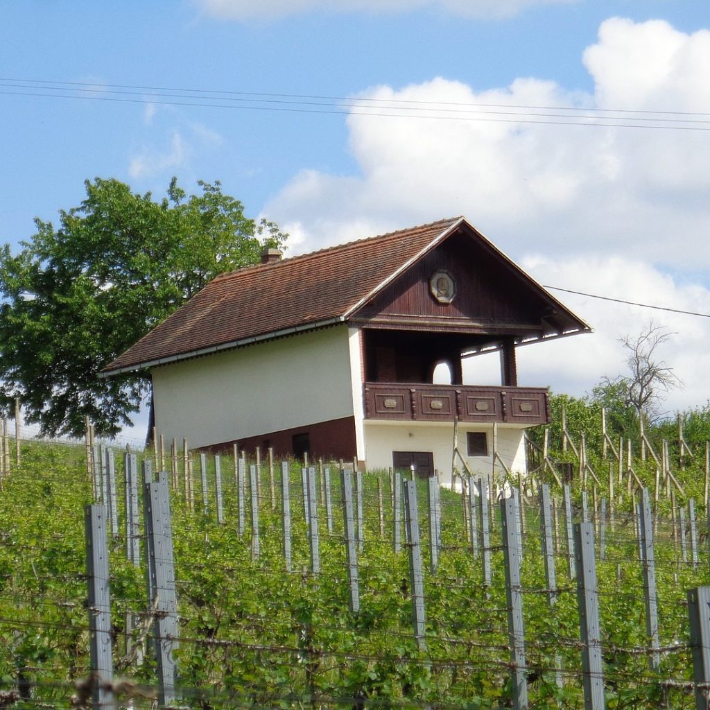 Weekend house in the vineyards of Međimurje