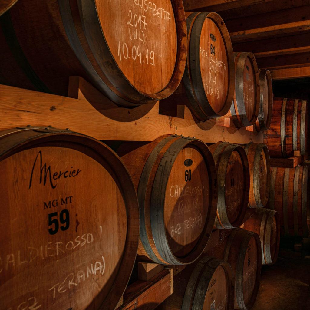 Wines maturing in barrels at Benvenuti, in Istria