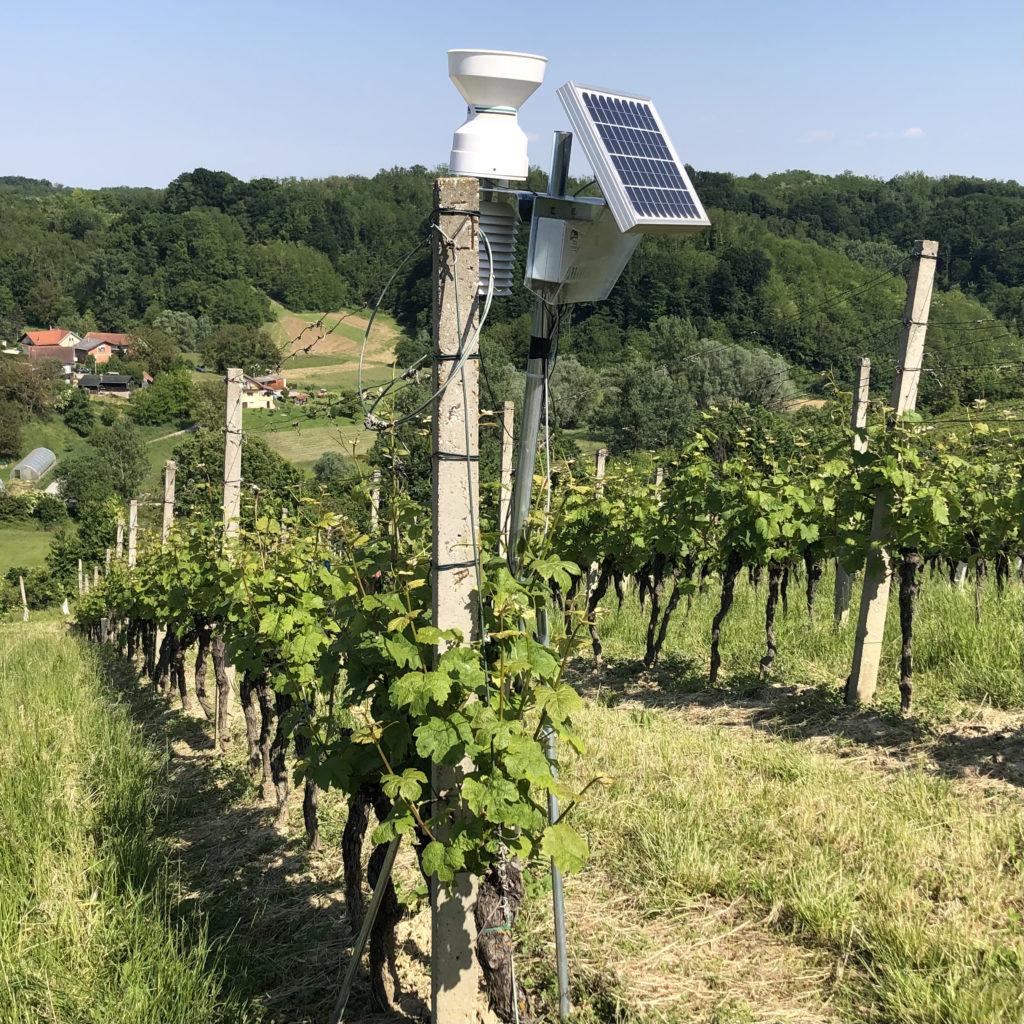 vineyard weather station
